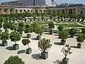 Versailles Orangerie, 17 July 2005 002.jpg