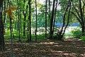 Versoix - panoramio (7).jpg