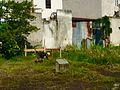 Vien da xay dung, tx.Phap Hueu,Binh hung hoa A, Binh tan, tp Hcmvn - panoramio.jpg