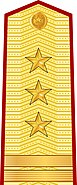 Vietnam People's Army Colonel