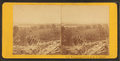 View from Mrs. Libby's residence, looking south towards Alton Bay, Wolfeboro, by Clifford, D. A., d. 1889.png