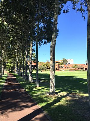 Curtin University - Grounds of Curtin University