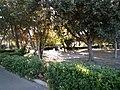 Villa, giardini.jpg