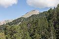 Vista subindo a Coll de Ordino. Andorra 308.jpg