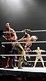 WWE Live 2015-04-17 21-52-07 ILCE-6000 0405 DxO (19688873521).jpg