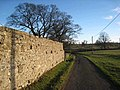Wall at Kirkharle Manor - geograph.org.uk - 675343.jpg
