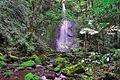 Waterfall in the crater floor of Mt. Cagua - ZooKeys-266-001-g015.jpg