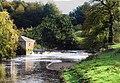 Weir White Cart Water - geograph.org.uk - 429319.jpg