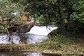 Weir above Weycroft Mill - geograph.org.uk - 16126.jpg
