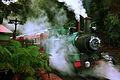 West Coast Wilderness Railway (4754055363).jpg