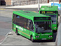 Western Greyhound 817 MX55WCT (14942457263).jpg