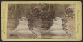 Whispering Falls, Havana Glen, N. Y., from Robert N. Dennis collection of stereoscopic views.png
