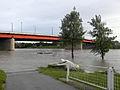 Wien - Hochwasser Juni 2013 - Brigittenauer Brücke.jpg