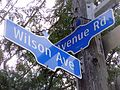 Wilson Avenue Road Signs.jpg
