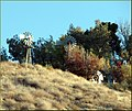 Windmills, Reservoir Rd., Redlands, CA 12-2-12 (8249791879).jpg