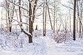 Woman on a bright winter day (Unsplash).jpg