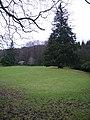 Woodland, Esthwaite Water - geograph.org.uk - 303683.jpg