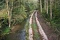 Woodland, River and Rail - geograph.org.uk - 270111.jpg
