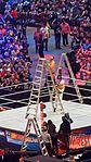 WrestleMania 32 2016-04-03 18-16-31 ILCE-6000 8829 DxO (27737346472).jpg