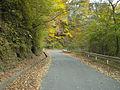 Yamanashi Prefectural Road 212 02.jpg