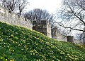 York City Walls - geograph.org.uk - 730749.jpg