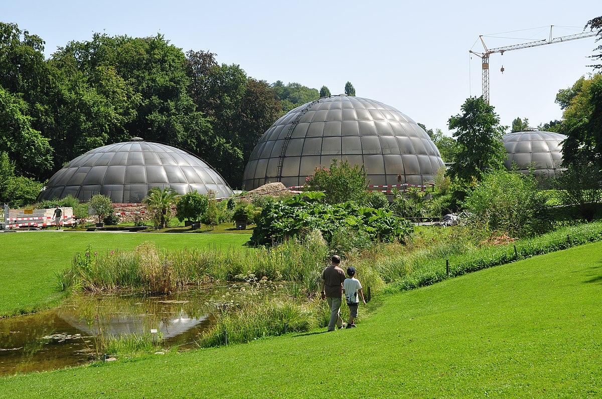 Botanischer Garten Zürich ? Wikipedia Garten Dezember Wo Was Verbessern