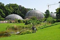 Zürich - Weinegg Botanischer Garten IMG 1863.jpg