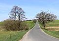 Zachotín, Petrkov, road No. 347.jpg