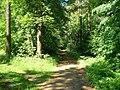 Zhdanovpark.jpg