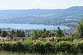 Zurich - panoramio (193).jpg