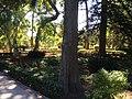 """""""000 San Anton Palace Garden 030"""".jpg"""