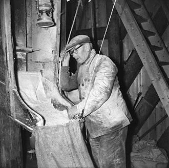 """Miller - Image: """"Den Hoed"""", molenaar bij maalbak Kruiningen 20128156 RCE"""