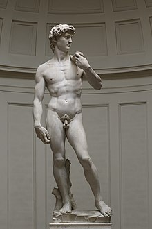 'David' by Michelangelo Fir JBU002.jpg