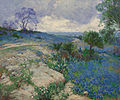 'Texas Landscape with Bluebonnets' by Julian Onderdonk, Heritage Auctions.jpg