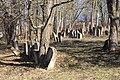 Єврейське кладовище Жабокрич2.jpg