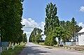 Автошлях C201524 «Автошлях М-19 — м'ясокомбінат» - 19065613.jpg
