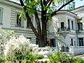 """Ботанічна памятка природи """"Будинок вчених"""" у м. Харкові по вул. Раднаркомівській, 10.JPG"""