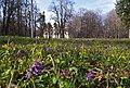 Вінниця - Парк на садибі Грохольських в П'ятничанах P1050808.JPG