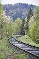 Карпатський національний природний парк 19 by Oleg Belous.jpg