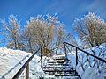 Кашин, Горсад - panoramio (5).jpg