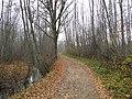 Осенняя дорога - panoramio (1).jpg