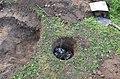 Припремање земљишта за формирање благотинске неолитске пећи 07.jpg