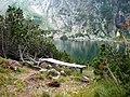 Равничалско езеро.jpg