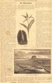 Сибирская жизнь. 1903. №121, прилож.pdf