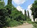 Солнечный. 4 июня 2013г. - panoramio (40).jpg