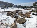 שלג באריאל 2013.jpg
