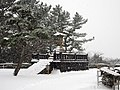 園内散策 (Hiwayama Park in midwinter) 12 Jan, 2013 - panoramio.jpg