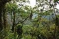 坪林象山 Pinglin Shangshan - panoramio.jpg