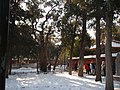 故宫御花园 - panoramio - 江上清风1961.jpg