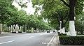 漂亮的杭州路 - panoramio.jpg